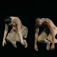 Começa amanhã o I Prêmio Desterro! Saiba tudo sobre a Mostra aqui no Dança Catarina!