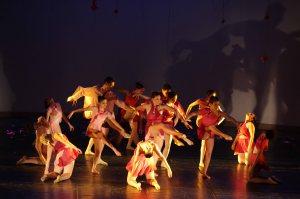 Grupo de Dança Fernando Lima - Crédito Vanderléia Macalossi