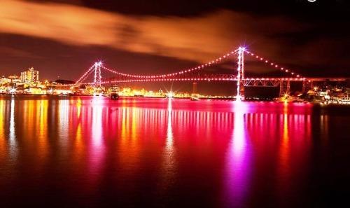 ponte rosa